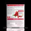 preview-lightbox-Ultra_Cranberry__Back__CTUCR030T1WL6E_1024x1024
